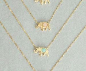 elephant, fashion, and india image