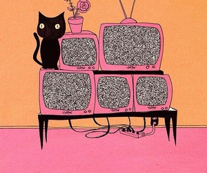 tv, cat, and pink image