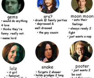 funny, harry potter, and the marauders image