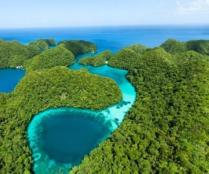 green, paradise, and travel image