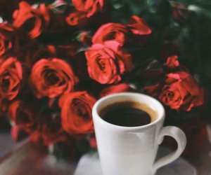 coffee and roses image