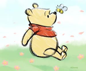 bear, line, and winnie the pooh image