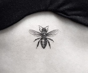 bee, black, and tattoo image