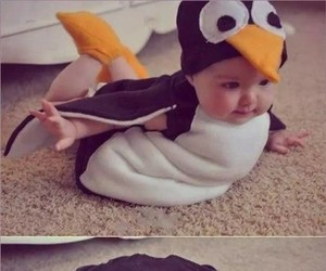 baby, cute, and penguin image
