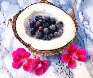 beautiful, berries, and coconut image