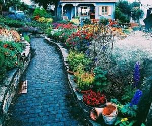 flowers, garden, and gardenia image
