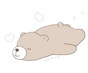 bear and soft image