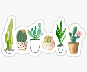 aesthetic, cactus, and stickers image