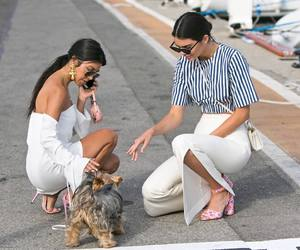 kendall jenner, kourtney kardashian, and dog image