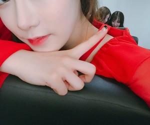 k-pop, pledis girlz, and kpop image