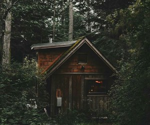 forest, cabin, and photo image