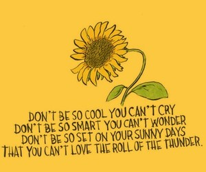 yellow, quotes, and sunflower image