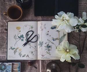 book, drawing, and flowers image