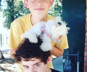 Lola, griffin gluck, and thomas barbusca image