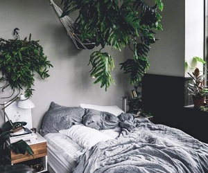 bed and plants image