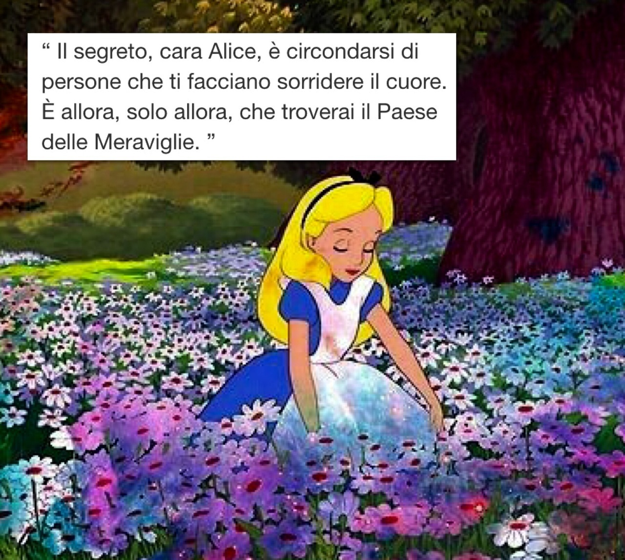 Image About Alice In Wonderland In Frasi By Ale