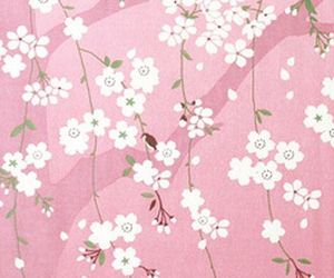 cherry blossom, japan, and pattern image
