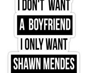shawn mendes, boyfriend, and shawn image