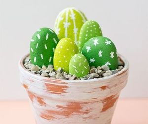 diy, cactus, and plants image