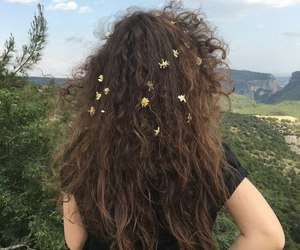 flowers, hair, and nature image