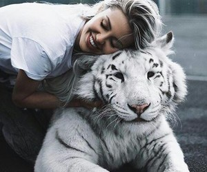 style, tigre blanco, and ternura image