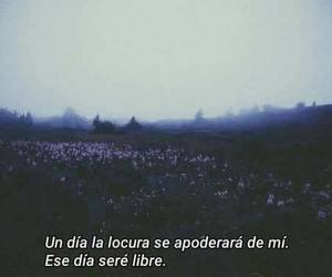 frases, free, and tumblr image