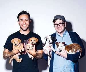 babys, dogs, and fall out boy image