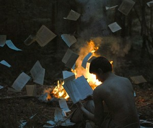 books, forest, and gas image