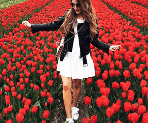 fashion, flowers, and red image
