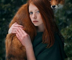 fox, forest, and ginger image
