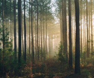 background, kawaii, and landscape image