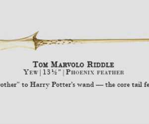 harry potter, tom riddle, and wand image
