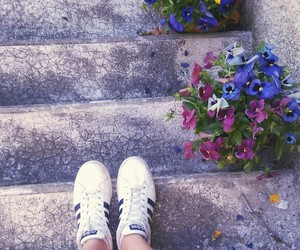 clothes, flowers, and outfits image