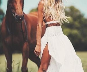 fashion and horse image