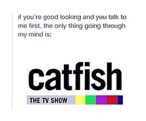 catfish and funny image