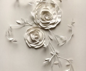 flower, wallpaper, and white image