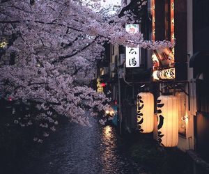 japan and pink image