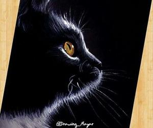 art, black, and cat image