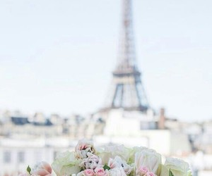 beauty, flowers, and paris image