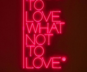 neon, pink, and what not to love image