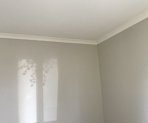 | plant shadow |, | white |, and | walls | image