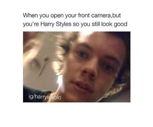 funny, memes, and Harry Styles image