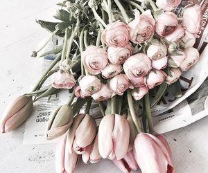 flowers, briliant, and 1k image