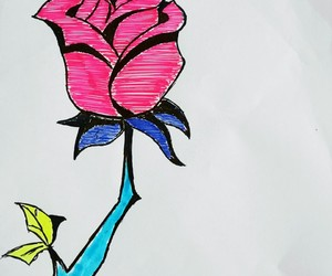 flower, roses, and love image
