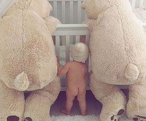 baby, bear, and fofo image