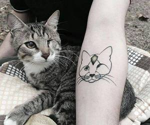 cat, cattattoo, and tattoo image