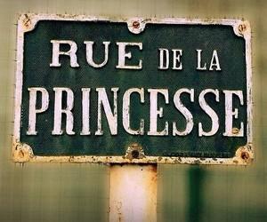 princess and french image