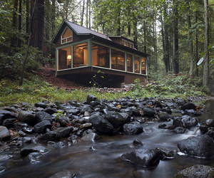 nature, cabin, and forest image