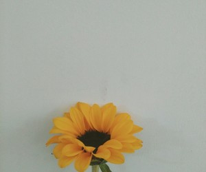alone, alternative, and flower image