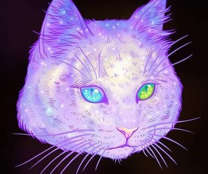 blue, green, and cat image